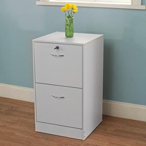 Generic Wilson Lightweight Simple Stylish Design 2 Drawer Metal Filing  Cabinet, White Finishes
