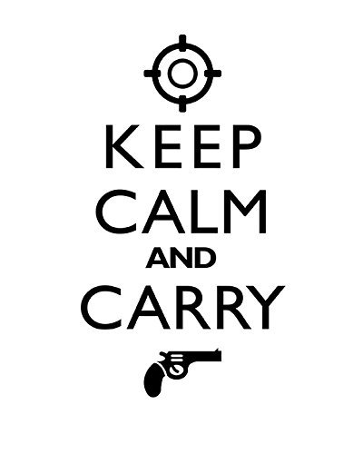 Amazon Com Home Decor Art Print Keep Calm And Carry Gun Decor
