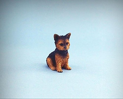NEW LISTING Adorable Dollhouse Miniature Yorkshire Terrier Puppy Dog #DP131 - My Mini Fairy Garden Dollhouse Accessories for Outdoor or House Decor