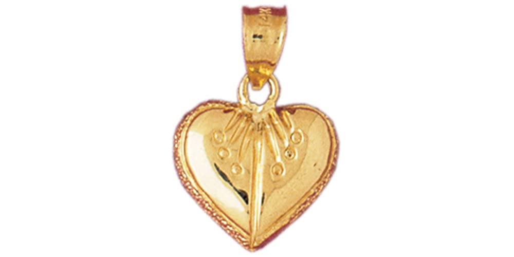Box or Curb Chain Necklace 14k Yellow Gold Heart Pendant on a 14K Yellow Gold Rope