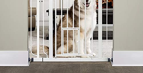 """41la7GHbHGS Carlson Extra Tall Walk Through Pet Gate with Small Pet Door, Includes 4-Inch Extension Kit, 4 Pack Pressure Mount Kit and 4 Pack Wall Mount Kit    Size: 36 x 36.5 inchescarlson pet products extra tall metal gate at 36 inches tall, The added height makes this gate just right for large pets and pets that like to jump. Expands from 29 to 36.5 inches wide. Add the included 4-Inch extension and expand your gate to 36.5 inches wide. Convenient walk-through design has an easy, one-touch release handle. Patented pet door is 8 inches by 8 inches to let small pets pass through, while everyone else stays put. Pressure mount system makes set-up quick and easy. Pressure mount system makes set-up quick and easy. All-steel construction is sturdy, durable, lead-free, non-toxic and chew-proof specifications: 36"""" H x 29-36.5"""" W Includes a 4-inch extension to create a 36.5-Inch Expansion pet door is 8"""" H x 8"""" W whiteamazon.Coman essential tool for homes with pets, The Carlson extra-tall walk-through pet gate is a convenient, chew-proof way to contain and protect both your pet and home. Made of steel, the 36-inch-tall gate is designed with a pressure-mount system for easy installation and is ideal for extra-wide openings. The #0941PW expands from 29""""- 36.5"""" and that includes only one 4"""" extension.. The walk-through design features a one-touch release handle so you can easily pass even while n things. A 8-by-8-inch pet door lets small animals pass through while everyone else stays put. Never use with pet able to climb over or dislodge/open the gate or enclosure"""