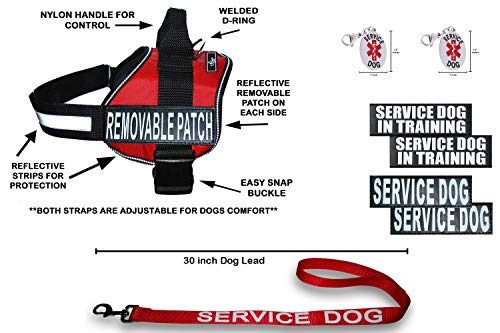 Doggie Stylz Official Service Dog in Training Vest Harness Bundle Kit. Includes Set of Service Dog + Service Dog in Training Removable Reflective Patches + 30 inch Lead + 2 ID Dog Tags