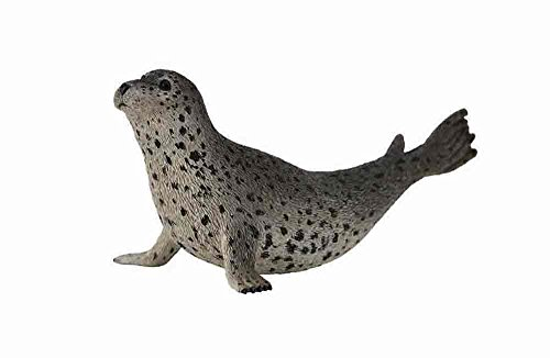 Authentic Seal - Collecta Sea Life Spotted Seal Toy Figure - Authentic Hand Painted Model