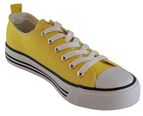 Cambridge Selezionare Donna Classica A Punta Chiusa Con Lacci In Tela Bassa Moda Sneaker Gialla
