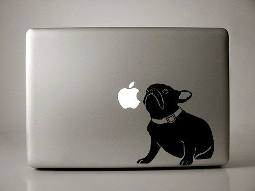 Jenny the French Bulldog Decal for 13