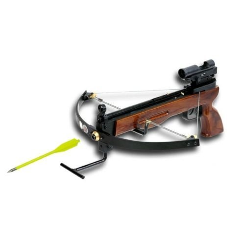 SPEED TRACK 6 1/4Inch 50-80lb Crossbow Bolts Target Arrows Practice Hunting Plinking (Pack of 60-Red and Yellow)