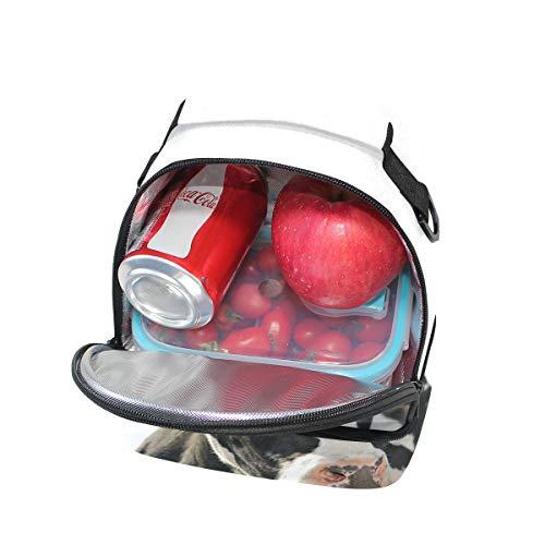 doble almuerzo Bolso de para con correa ajustable pícnic 4ExAxqPHw