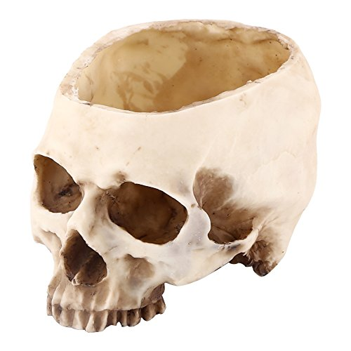 Artificial Resin Skull Head Flower Pot Plant Bowl Container Garden Planter Multifunctional Tabletop Storage Tank Replica Skeleton Model Home Bar Table Decor Halloween - Skull Resin