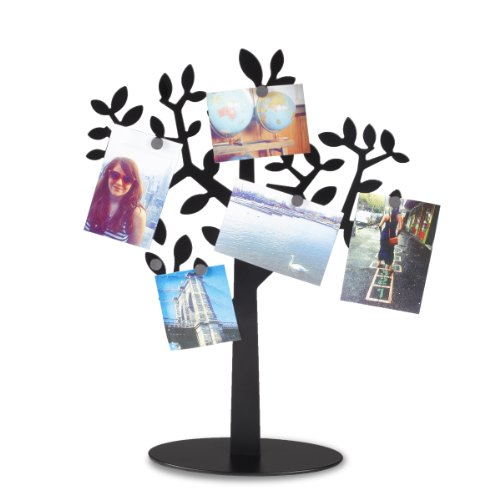 Umbra Laurel Magnetic Photo Tree, Black