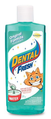 Synergy Dental Fresh Cat, 8 Ounce, My Pet Supplies
