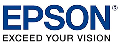 Epson 111197100 TM-L90 Labels Paper 220 Inch x 100 Inch Black - Box of 10 Rolls 1000 LabelsRoll (Epson L90)