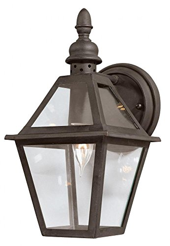 "Troy Lighting Townsend 13""H 1-Not weighty Outdoor Wall Lantern - Natural Bronze Finish with Clear Glass"