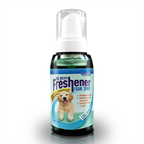 Dog Breath Freshener & Teeth Cleaning for Lasting Mints Flavor from Petseer - Patented No Toothbrush Formula - Happy Dogs Cat Kisses - Perfect with Treats - Natural Pet Products - Save Money from Tropiclean & Expensive Dental Care for Dogs Now