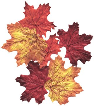 (100 Silk Autumn Leaves Assorted Festive Fall Colors Country Wedding Floral)