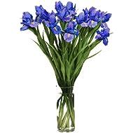 KaBloom Bouquet of Fresh Blue Irises (20 Stems) with Vase