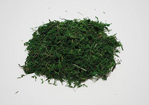 【Good in three directions】도 #도 # 대삼림 리얼한초 디오라마용 MOS 녹색 충분히 80g 녹색