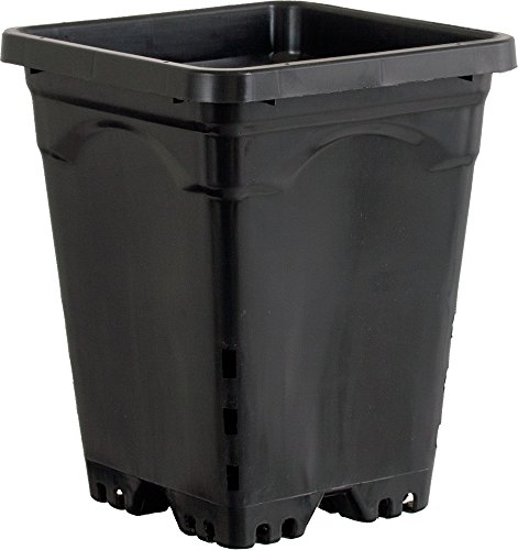 Active Aqua HG7X7SB 7''x7'' Square Pot (Case of 50), 9'', Black by Active Aqua