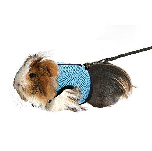 Rely2016 Guinea Pig and Rabbit Soft Mesh Harness with Leash, Suitable for Small Animals about 2 KG (Light Blue)