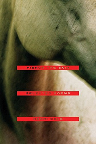 Read Online Pierce the Skin: Selected Poems, 1982-2007 ebook