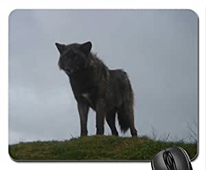 The Black Alpha Wolf Cute Cool Decorative Design Animal Dog Mousepad