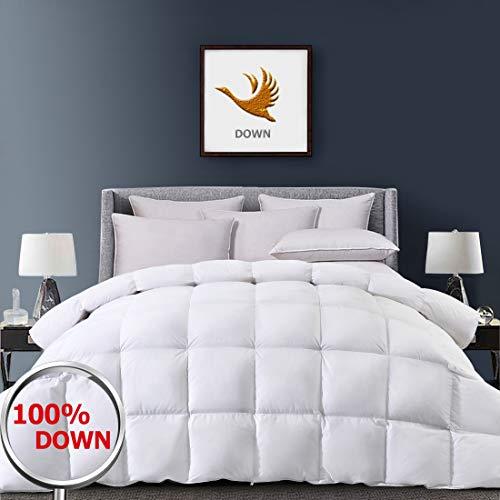 Fraylon Down Comforter Queen Size Lightweight for All Season with 1800 TC 100% Egyptian Cotton Shell, 750+ Fill Power White Fluffy Alternative Duvet Insert 42oz