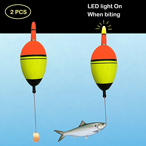 Kingfisher Led Lights