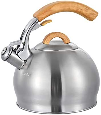 stainless-steel-tea-kettle-stovetop