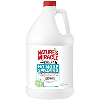Amazon Com Nature S Miracle No More Spraying Stain And