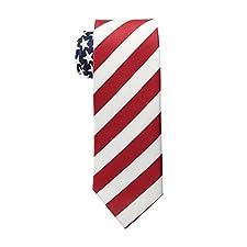 Men's American Flag Neck Tie USA Patriotic NeckTie Red White Blue Colors