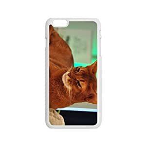 The Brown Hight Quality Plastic Case for Iphone 6