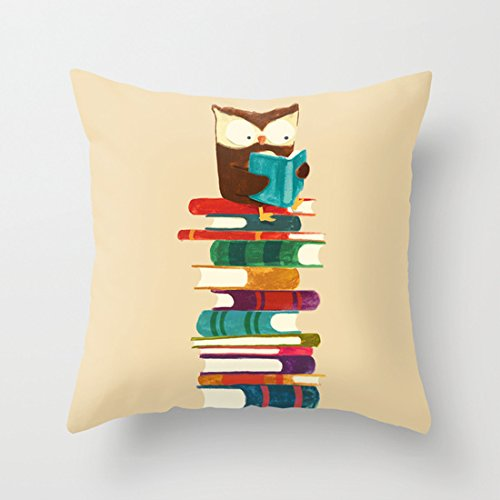 Owl Reading Rainbow Cute Throw Pillow Covers Accent Pillows Pillow Covers for Teens Cushion Covers 18 x 18