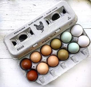 Egg Cartons- Printed Recycled Egg Carton, Bulk 250 Egg Cartons per Bundle, Attractive Farm Fresh Design w/FDA reqs, One Dozen Eggs, Recycled Paper Pulp Cardboard, Small Medium Large & XL Eggs by Henlay (Image #6)