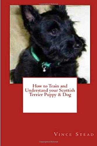 How to Train and Understand your Scottish Terrier Puppy & (Scottish Terrier Puppies)