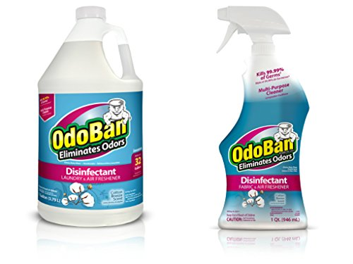[해외]OdoBan 32 온스 스프레이 병 및 1 갤런 농축액/OdoBan Ready-to-Use 32 oz Spray Bottle and 1 Gal Concentrate