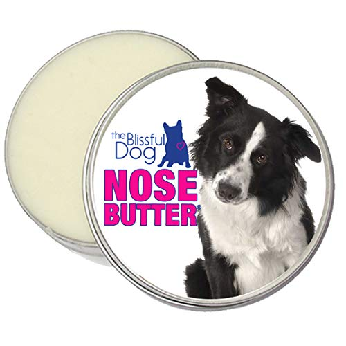 The Blissful Dog Border Collie Nose Butter, 1-Ounce Review
