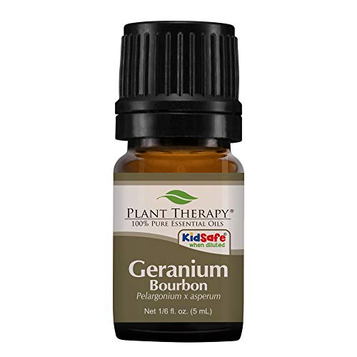 Rose Geranium Fragrance Oil - Plant Therapy Geranium Bourbon Essential Oil   100% Pure, Undiluted, Natural Aromatherapy, Therapeutic Grade   5 milliliter (1/6 ounce)