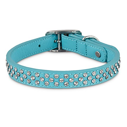 Bond & Co. Leather Bling Turquoise Dog Collar, for Neck Sizes 15-18, Medium