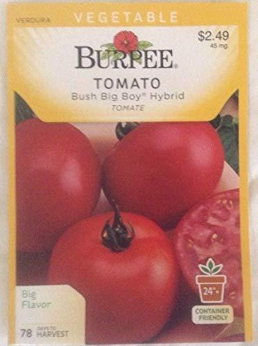 Casavidas Seeds Package: Burpee Bush Big Boy Hybrid Tomato, 45 Mg, 2 for 1 Packets