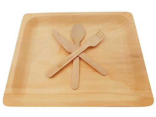 Wooden Disposable Cutlery Kit of 50 Plates(10.5 inch),50 Forks, 50 Spoons, 50 Knives, 6 inch Utensils,Biodegradable, Compostable Dinnerware,Wedding,Dinner,Catering & Party Supplies(Pack of 200) (Disposable Cutlery Kits)
