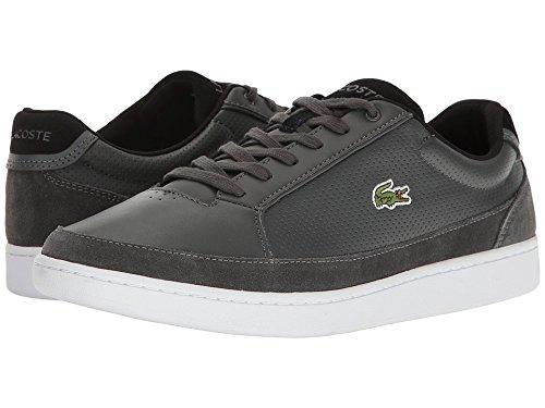 Lacoste Suede Shoes - 7