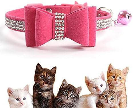 Kingkindshun Collar para Gato con Cascabel y Cierre de Seguridad…: Amazon.es: Productos para mascotas