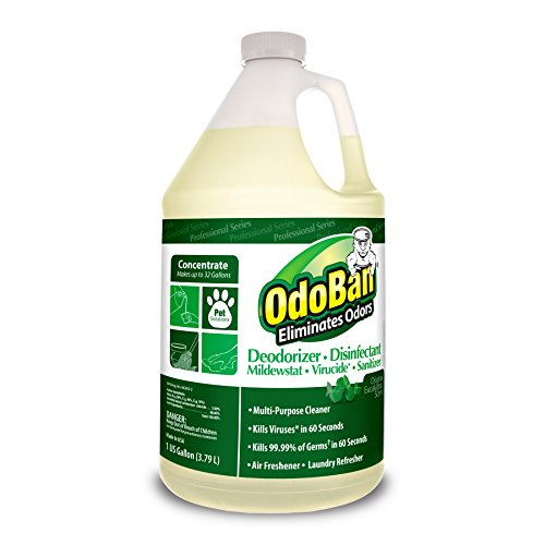 OdoBan Disinfectant Eliminator Concentrate Eucalyptus product image