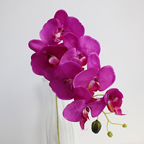 jiumengya 5pcs 78cm (7 heads/piece) Phalaenopsis Butterfly Moth Orchid Thai Orchids for Wedding Centerpiece Decorative Artificial Flowers (fucshia) by jiumengya