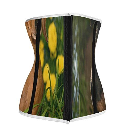 Waist Trainer for Women,Cute Dachshund Dogs In Flowers Underbust Corset Slimming Body Shaper Belt/Cincher/Trimmer Weight Loss XXL