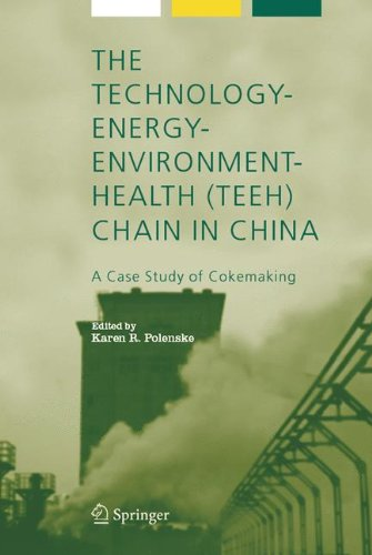 Download The Technology-Energy-Environment-Health (TEEH) Chain In China: A Case Study of Cokemaking (Alliance for Global Sustainability Bookseries) PDF