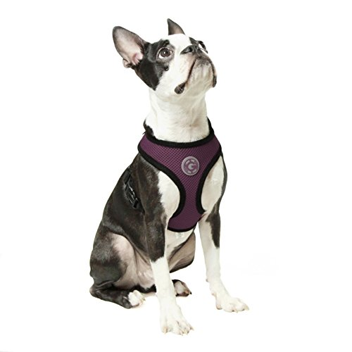 Gooby - Soft Mesh Harness, Small Dog Harness with Breathable Mesh, Purple, Large