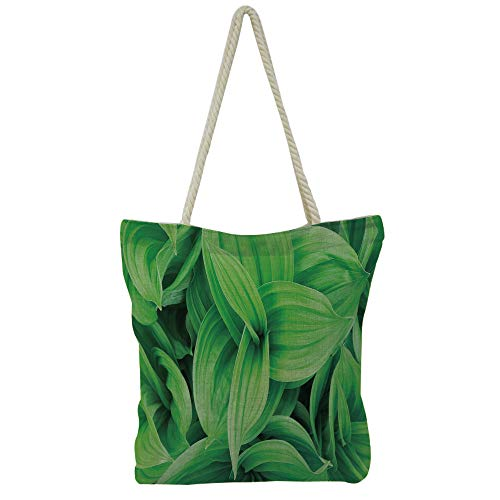 - iPrint Hand Cotton and Linen Bag Shoulder Bag,Plant,Close up Image of Strelitzia Reginae Bird of Paradise Flower Madeira Island Portugal Decorative,Multicolor,3D Print Design.