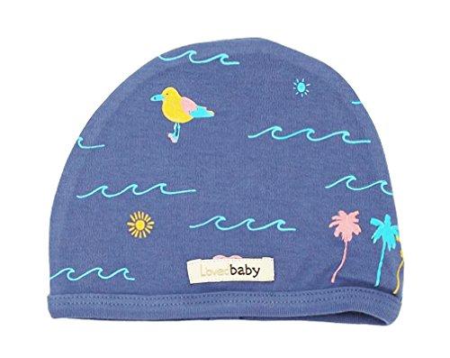 Organic Cotton Cap - L'ovedbaby Unisex-Baby Organic Infant Cap (Slate Surf, 6-12 Months)