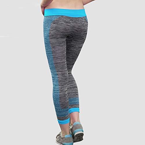 Activewear Bottoms Constructive Champion Duo Dry Womens Stretch Black Athletic Capri Pants Size Medium Large Assortment Activewear