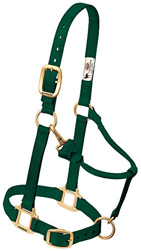 Weaver Leather Nylon Adjustable Draft Horse Halter, 1